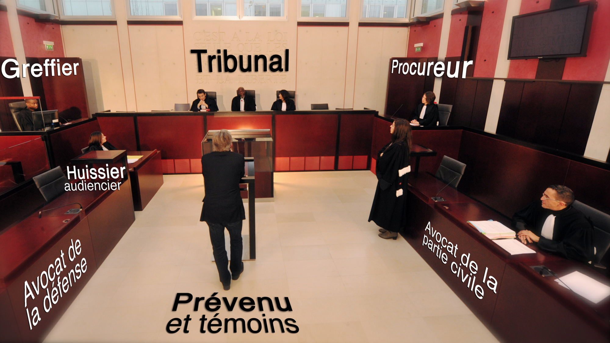Tribunal prévention